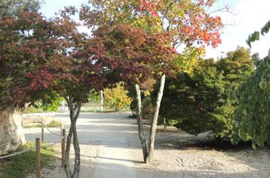 jardin-botanique-bastide